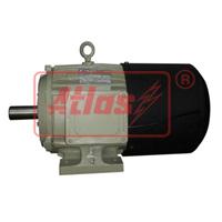 Inverter Duty Motor : Inverter Duty Motor manufacturer in India