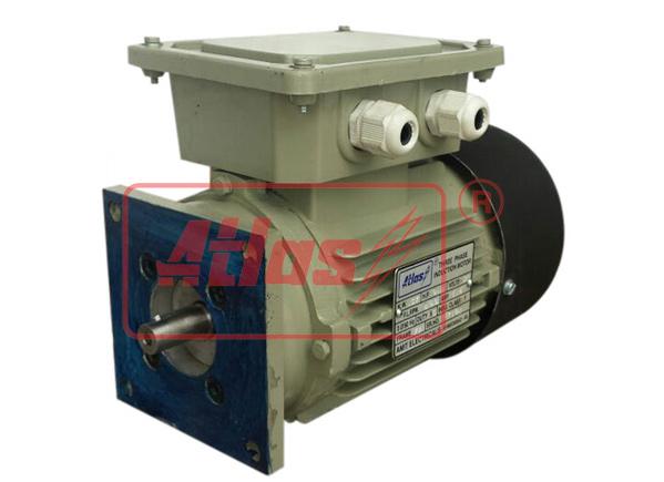 Dual Speed Brake Motor
