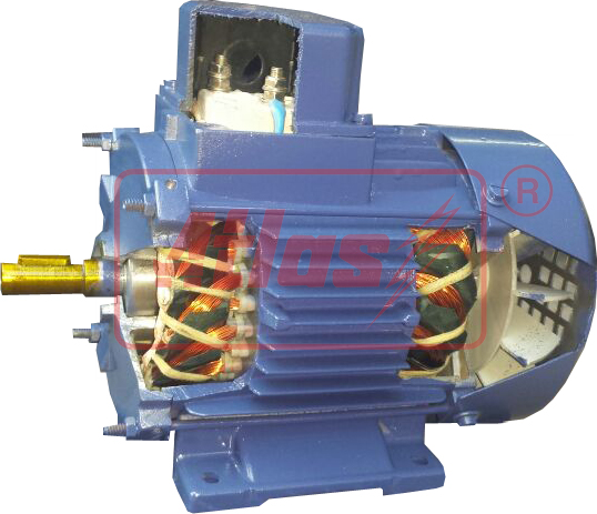 Cut Section Motor