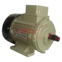 Dual Voltage Motor