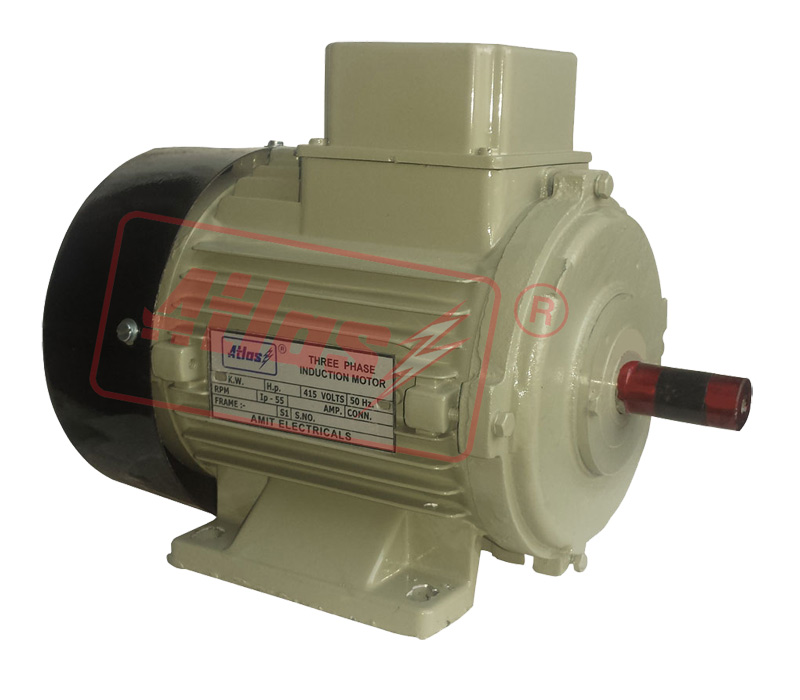 Three Phase Standard Motors